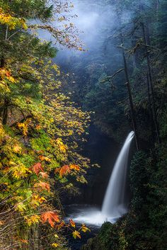 Oregon waterfalls.