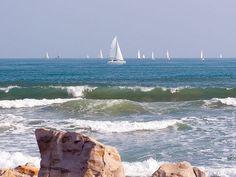 Sailboat Regatta in Galveston, Texas Gulf of Mexico