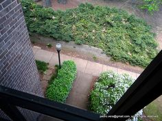 #photoadayapril #project366 25/116: Looking Down. by pvera, via Flickr