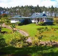 Luxury estate, ocean views, waterfall, utter privacy on 20 acres