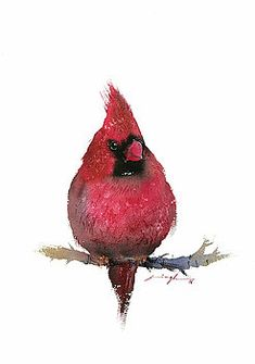 Yet another watercolor artwork of bird I did last year. This red cardinal has inspired me to paint lot many varieties of birds in… Watercolor Artwork, Watercolor Bird, Watercolor Artists, Bird Poster, Thing 1, Mini Paintings, Bird Prints, Bird Art, Artist At Work