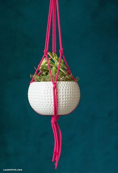 Latest Photo Easy DIY Macrame Plant Hanger Tutorial Strategies If you have small room for the keeping of flowerpots, hanging flowerpots are a good Alternative to r Macrame Plant Hanger Tutorial, Macrame Plant Hanger Patterns, Rope Plant Hanger, Metal Plant Hangers, Macrame Plant Holder, Macrame Plant Hangers, Macrame Patterns, Plant Holders, Macrame Tutorial