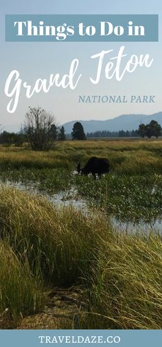 15 Best Things to Do in Grand Teton National Park. US National Parks. Jackson Hole, Wyoming. Top Things to do in Grand Teton National Park. What to do in Grand Teton. Top National Parks. #grandteton #nationalparks #usa