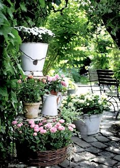 Lovely mix of rustic containers