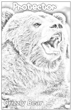 Wildlife, Posters, Bear, American, Etsy, Animals, Shopping, Animais, Animales