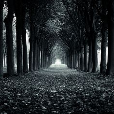 And so we walk that path alone...