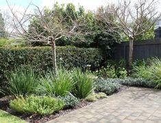 114 Best New Zealand Designed Gardens Images Landscaping New