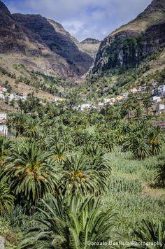 Valle Gran Rey. La Gomera.