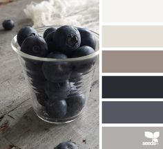 { color pick } image via: @robinzachary