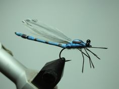 Fly Tying Patterns | Fly Tying Nation: Foam Nation - foam fly pattern. For more fly fishing info follow and subscribe www.theflyreelguide.com Also check out the original pinners/creators site and support