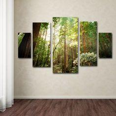 Ariane Moshayedi 'Muir Woods' 5-piece Canvas Art