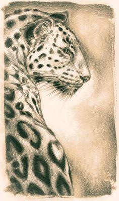 Jaguar Lithograph