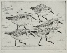 Drypoint Etching, Etchings, Moose Art, Birds, Crafts, Animals, Drawings, Manualidades, Animales