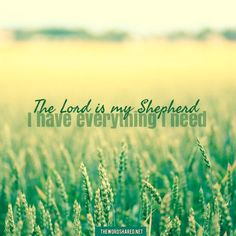 The Lord is my shepherd I have everything I need. #TheWordShared