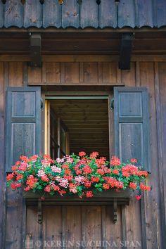 Window details of houses on the shores of Hallstatter Lake, Hallstatt, Austria