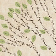 Do family history together - draw up a new line when you find a story about an individual and share with the family.