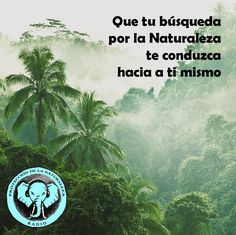 Mensajes para la Protección de la Naturaleza y la Evolución del Ser http://escoladelser.wixsite.com/naturalezaproteccion