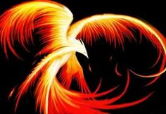 In ancient Chinese thought, summer was associated with the color red, the sound of laughing, the heart organ, the fire element and a red phoenix bird.