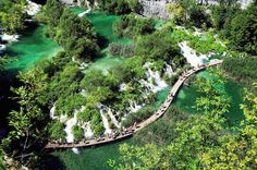"Private Plitvice National Park Tour from Zadar Spend a day in the breathtaking beauty of Croatia's Dinaric Mountains on a 8-hour tour of Plitvice Lakes and walk in forests of green. See the terraced lakes and waterfalls of crystal clear water flowing through a vast and lush environment.Granted UNESCO World Heritage status in 1979, Plitvice is located roughly halfway between Zagreb and Zadar. Marked on old maps as the ""Devil's Garden,"" the spectacular area consists of 16 interc..."