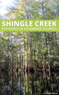 Kayak Tips Packing Lists Kayaking Shingle Creek Kissimmee Florida is a great way to take a break from the theme parks and explore nature. Places In Florida, Florida Vacation, Florida Travel, Florida Beaches, Florida Usa, Orlando Florida, Florida Springs, Clearwater Florida, Travel