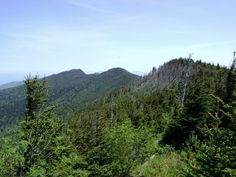 Black Mountain Crest Trail, NC