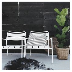 Ikea Roxio outdoor chairs and a fiddle leaf fig plant. Scandinavian chic on a budget! Outdoor Dining, Outdoor Spaces, Outdoor Chairs, Outdoor Decor, Garden Inspiration, Room Inspiration, Interior Balcony, Garden Living, Outside Living