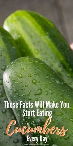 Cucumber Benefits: What Happens To Your Body If You Eat Cucumber Every Day - Natural Home Remedies Natural Health Remedies, Natural Cures, Home Remedies, Herbal Remedies, Health And Wellness, Health Fitness, Health Care, Fitness Facts, Health Diet