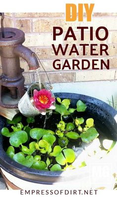 Small water gardens are perfect for balconies and patios. You can grow a variety of aquatic plants and enjoy the sound of a small waterfall. This shows you what you need to create your own. Indoor Water Features, Small Water Features, Water Features In The Garden, Hydroponic Gardening, Hydroponics, Organic Gardening, Gardening Tips, Balcony Gardening, Gardening Supplies