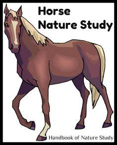 Handbook of Nature Study: Autumn 2010 OHC #3: Horses