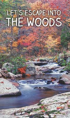 Agreed! Missouri has some incredibly beautiful woods that are just waiting to be explored! Hike, fish, camp, boat, bike, you name it and Missouri can accommodate your adventures!