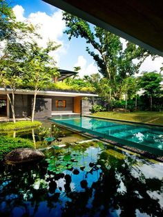 A swimming pool coexisting with the natural water feature.