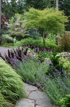 Sweeping masses of soft-textured plants surround an irregular basalt flagstone pathway.
