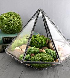 Geometric Glass Diamond Terrarium with Plants by DoodleBirdie on Etsy https://www.etsy.com/listing/238855215/geometric-glass-diamond-terrarium-with