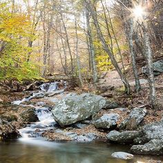 Photo by @erickruszewski - The sun bursts through colorful #autumn foliage in #Shenandoah National Park. This shallow #waterfall is along the Dark Hollow Falls Trail. by natgeotravel
