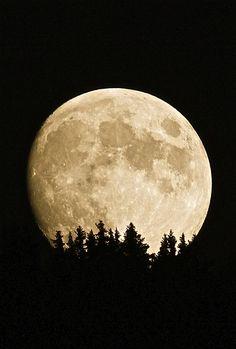 Black Forest Full moon, Germany, (by muttigiovanni)
