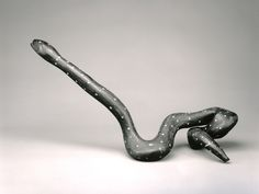 American   Dotted Root Snake, ca. 1890  Carved and painted root  21 3/4 x 3 x 50 in. (55.25 x 7.62 x 127 cm)  The Michael and Julie Hall Collection of American Folk Art M1989.154   Photo credit Efraim Lev-er