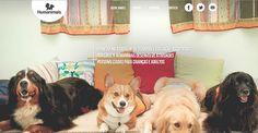 Terapias e educação assistidas por cães beneficiam crianças e adultos | Petzlife Brasil