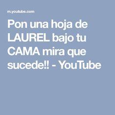 Pon una hoja de LAUREL bajo tu CAMA mira que sucede!! - YouTube