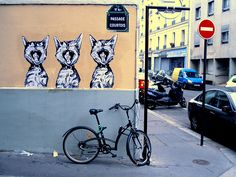 street art by Siriani.  Chats dans l'art, Paris. Street art 000 cat