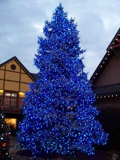 The Christmas Place in Pigeon Forge, TN.... was just there last month & next door they have the best sugar cookies in the world at Mrs. Claus Candy Kitchen