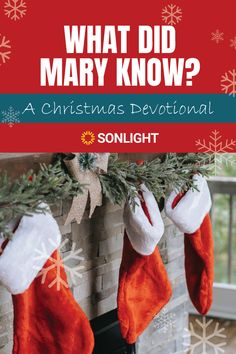 What did Mary know about Jesus? This inspiring Christmas devotional starts with the gorgeous carol and moves to scripture for the answer. #christmas #devotional Homeschool Curriculum, Homeschooling, Christmas Devotions, Advent Activities, Calming The Storm, Raising Godly Children, Advent Season, Jesus Resurrection, Birth Of Jesus