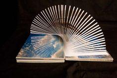 Pop-upbooks | Blog Sint-Lucasbibliotheek Gent  http://www.pinterest.com/schwartzbergj/pop-up-books/