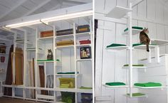 Jayne, designer of the beautiful retro cat beds from Like Kittysville, created these awesome climbing shelves in her garage using only scrap lumber, some of which she pulled right out of the dumpster. It goes to show that a creative design and some white paint can transform old scraps into a sensational kitty playspace! The green…