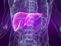 Non-Alcoholic Fatty Liver Disease (NAFLD) patients often have leaky gut that exacerbates the problem. Probiotics seem to be useful for both the leaky gut repair and decreasing fat in the liver. This is very good for the patient. Liver Failure Symptoms, Liver Detox Symptoms, Liver Detox Cleanse, Detox Your Liver, Liver Disease, Detox Your Body, Liver Flush, Natural Liver Detox, Natural Health