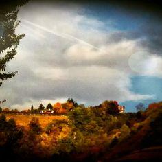 #autumn #colors