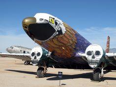 Art plane (photo: Paul Woodford)