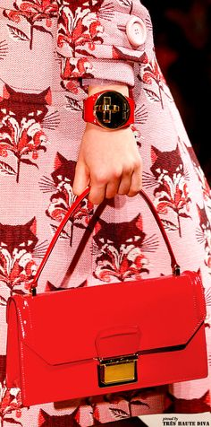 Miu Miu Spring 2014.    I love this Spring cat coat with red purse.