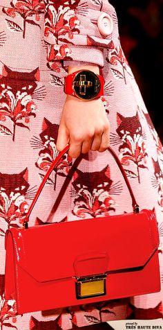 Miu Miu Spring 2014.    I love this Spring cat coat with red purse.
