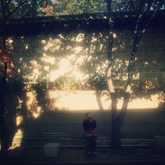 .@jkyung_yu | #종로3가#8번출구#모르는#골목#빛 | Webstagram