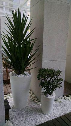 Indoor Plant Pots, Indoor Garden, Outdoor Gardens, Outdoor Flower Planters, Outdoor Flowers, House Plants Decor, Plant Decor, Green Plants, Tropical Plants